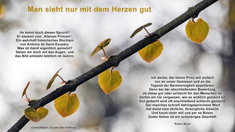 HERZ-LICH