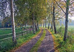 Herzerfrischender Herbst