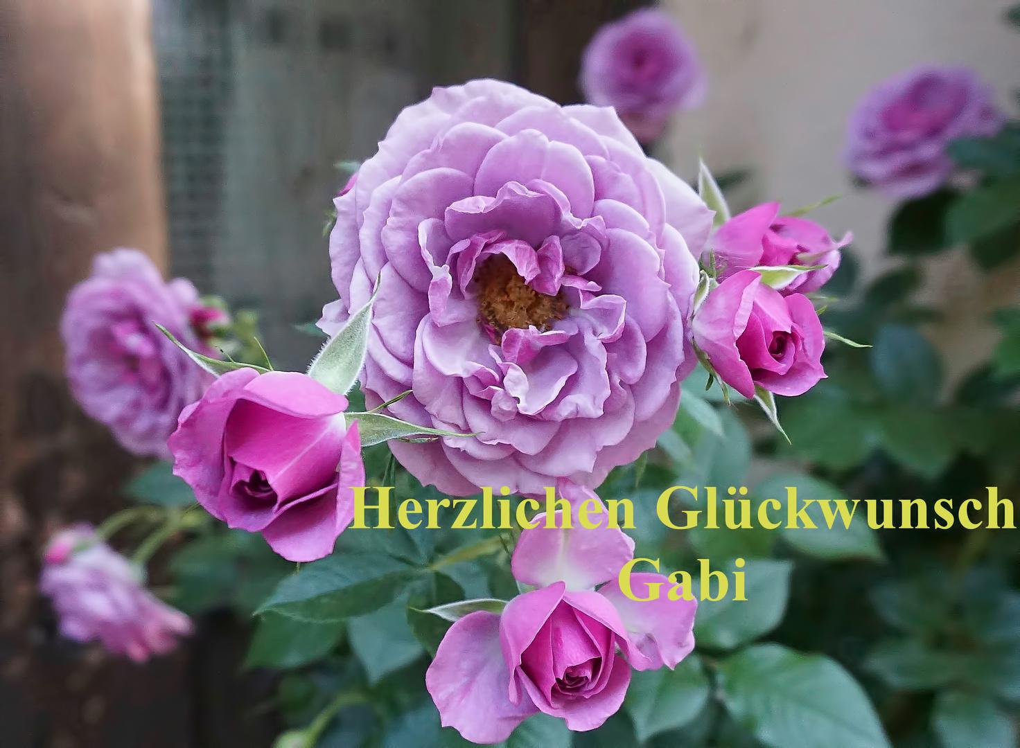 Herzlichen Glückwunsch Gabi 04