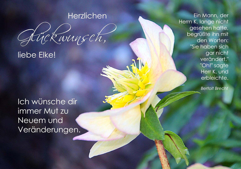 Herzlichen Gluckwunsch Zum Geburtstag Liebe Elke Foto Bild