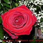 Herzlichen Glückwunsch zum Geburtstag liebe Rubie