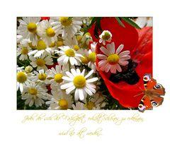 Herzlichen Glückwunsch zum Geburtstag, liebe Sylvia