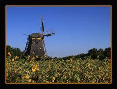 Hessenpark II: Die alte Windmühle
