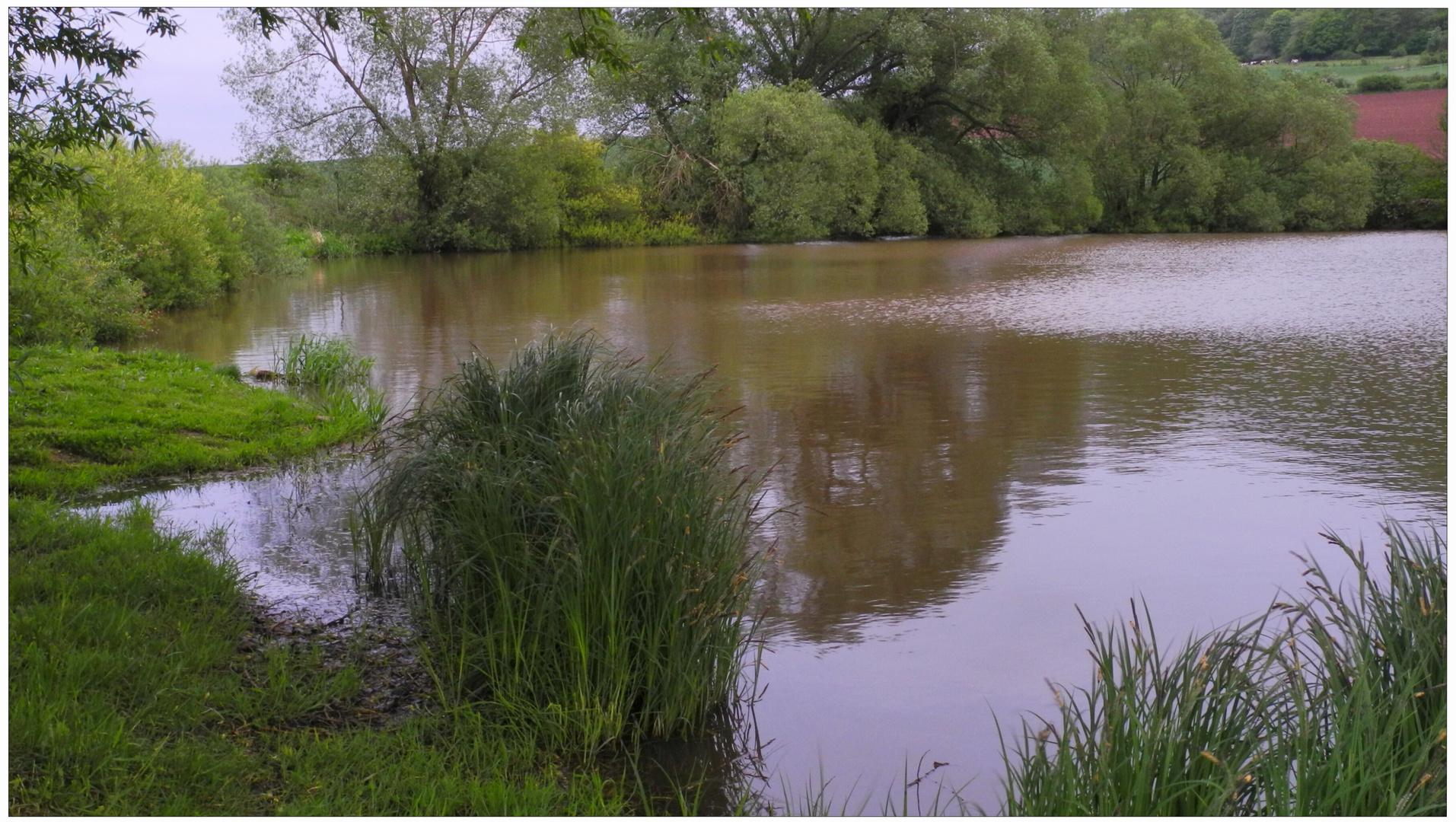 Heute am See (hoy en el lago)