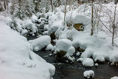 Heute beim Schneeschuhwandern entlang des Reschbachs im Nationalpark Bayerischer Wald