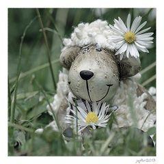 Heute bin ich ein zufriedenes Schaf...