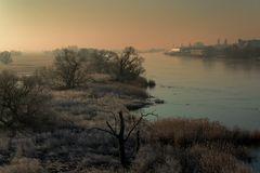 heute früh an der Elbe