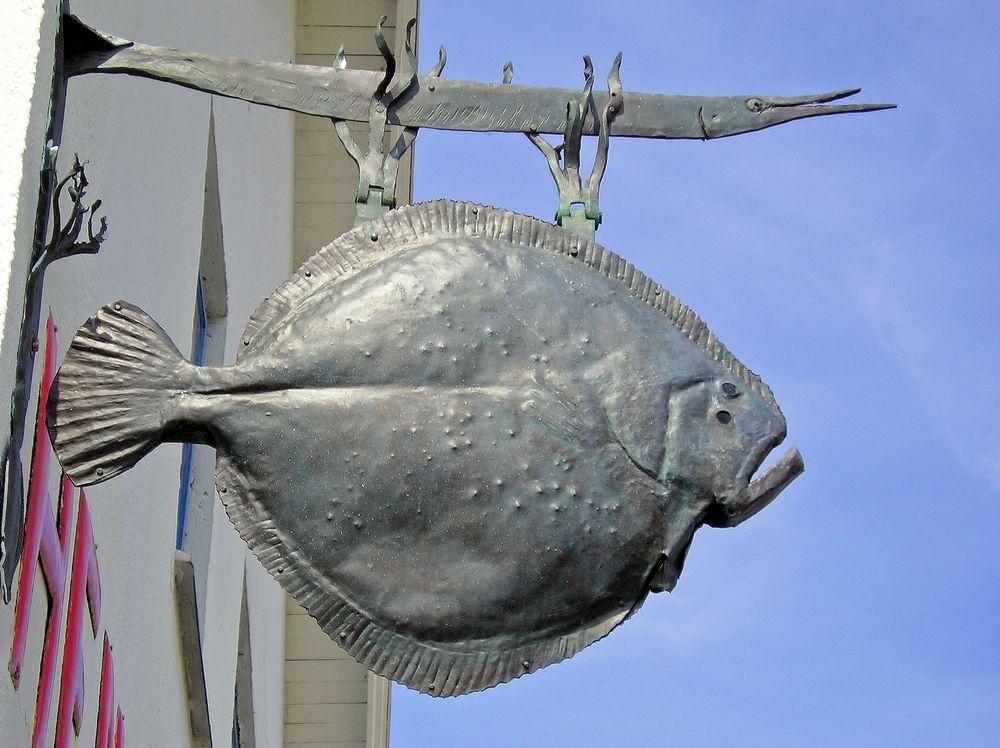 Fisch Heute