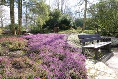 Heute im Botanischen Garten von Solingen