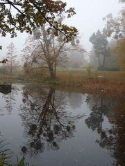 Heute im Landschaftspark Degnershausen