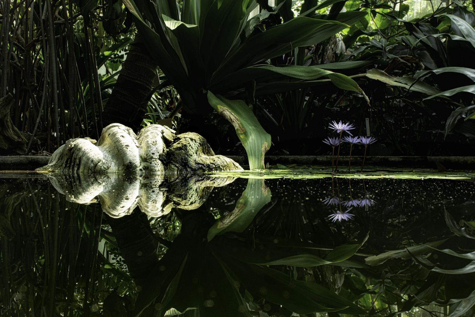 Heute im Spiegel: Planten und Blomen