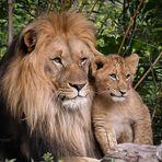 Heute ist Vater und Sohn Tag