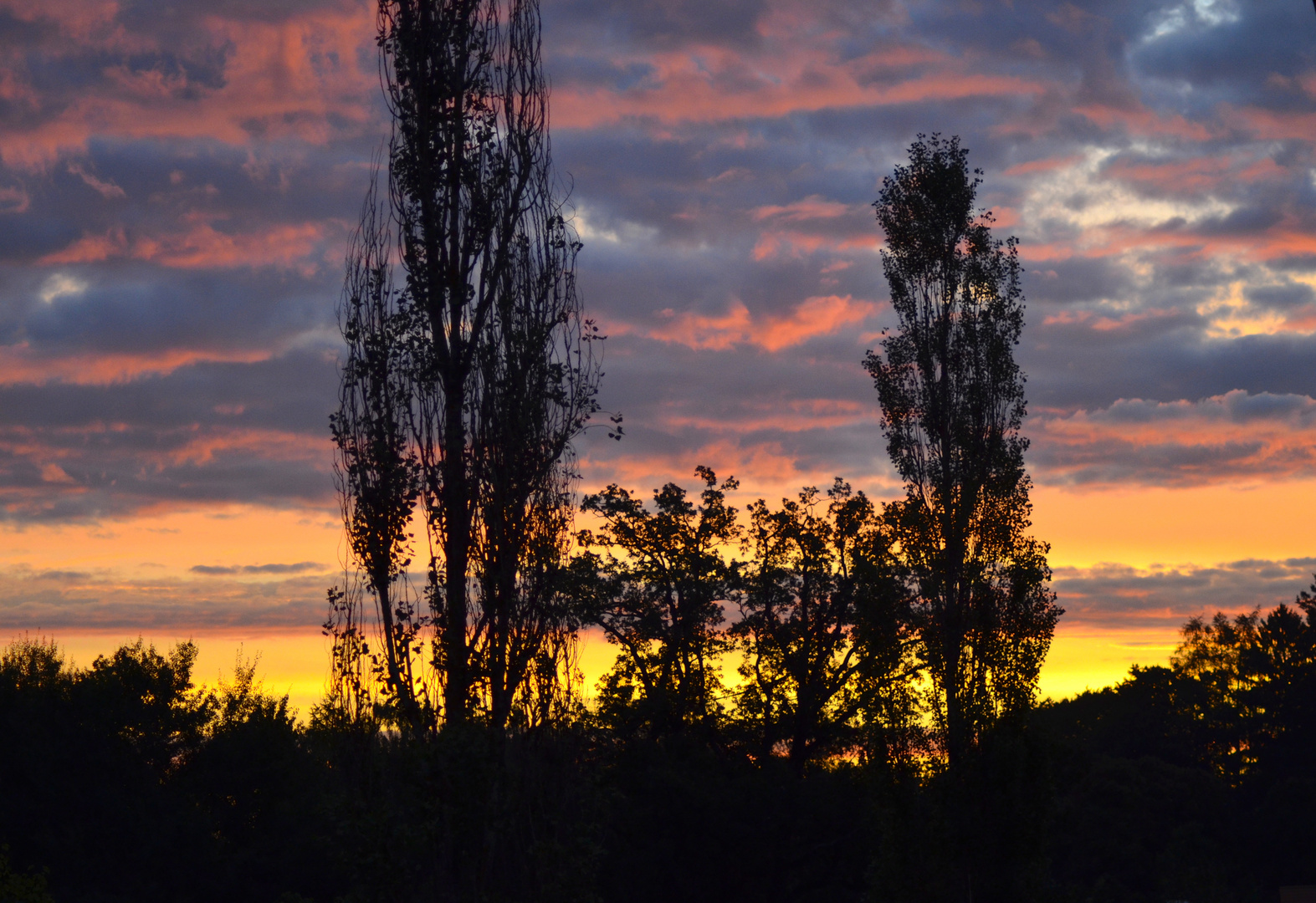 heute Morgen ... Anfang Oktober in Bayern :-)
