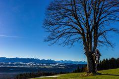 Heute morgen: Blick vom Hohen Peißenberg auf die Alpenkette