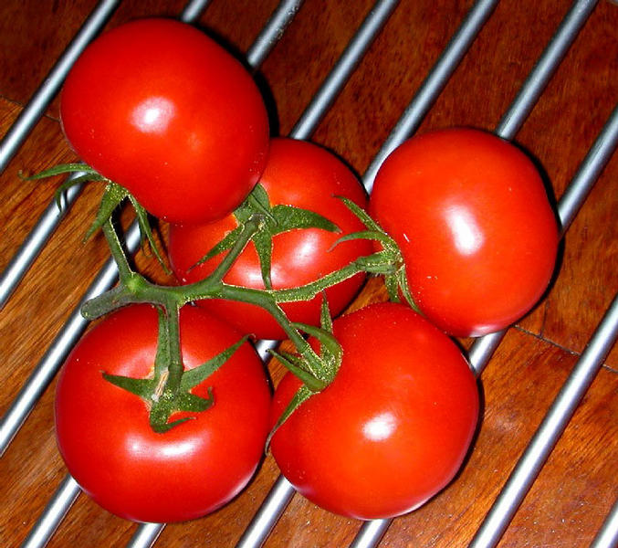 ...heute Tomate...morgen Suppe...