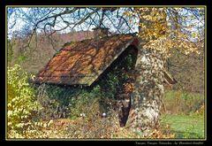 """""""Hexenhäuschen"""" im Herbstlook"""