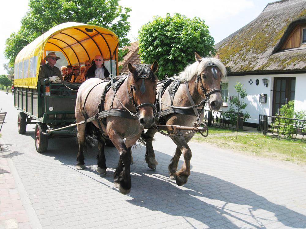 Hiddensee-Taxi
