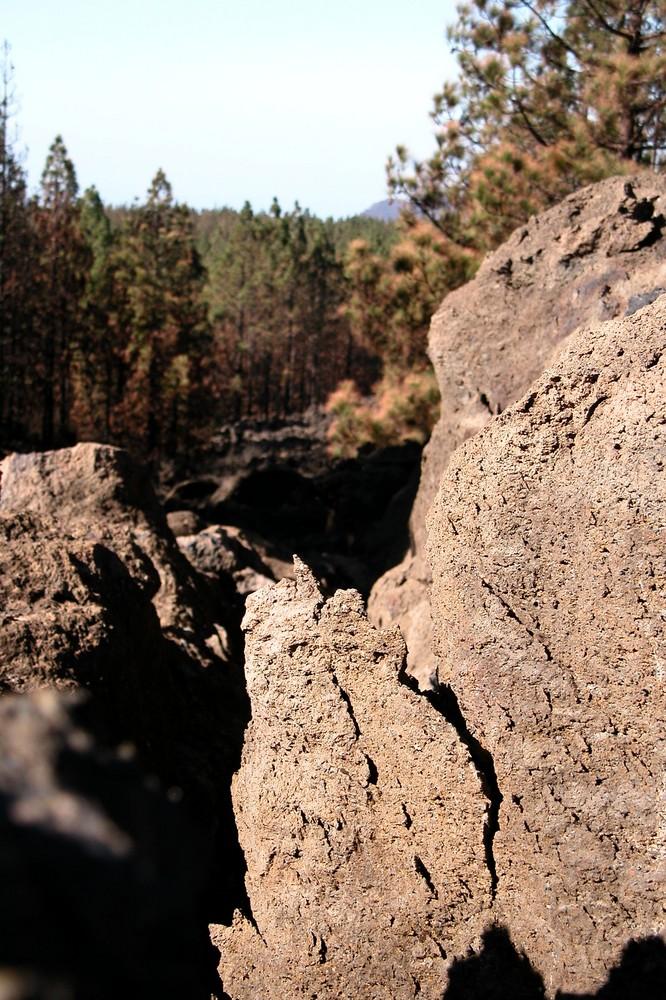 Hier bahnte die Lava sich den Weg durch