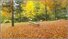 Hier hat der Herbst ein Bundstift verloren