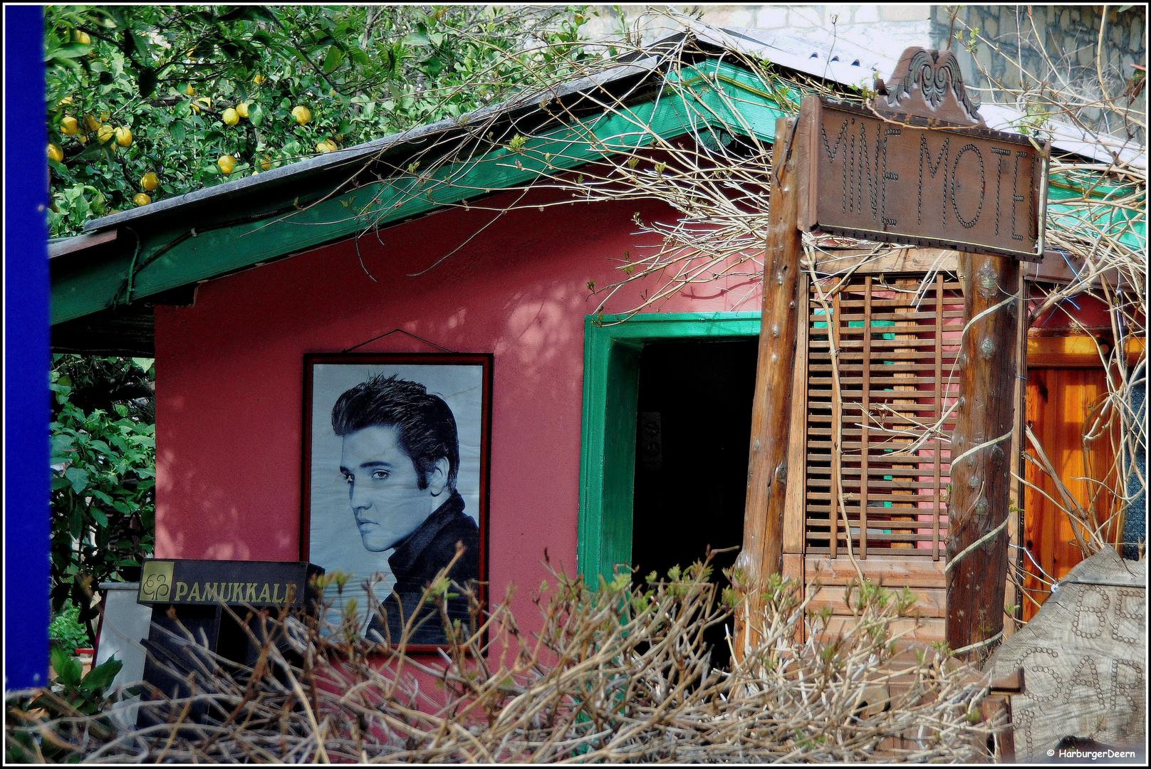 Hier wohnt Elvis..........