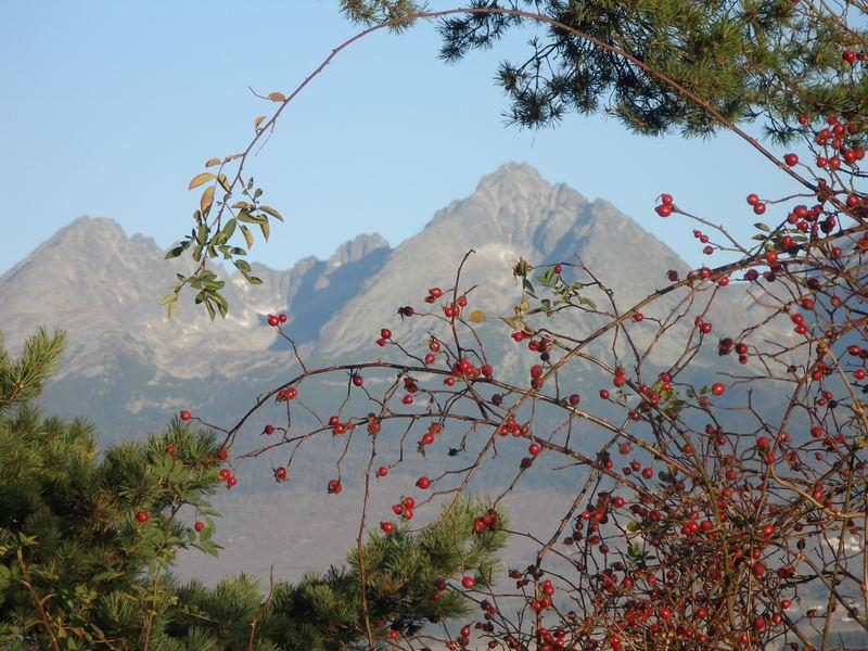 High Tatras-Slovakia