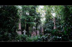 highgate cemetery (west)