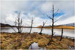 Highlands ...