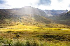 Highlands Wiesen