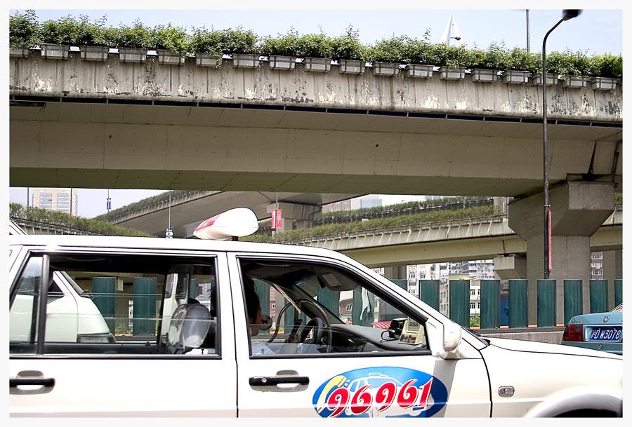 Highwaybepflanzung..