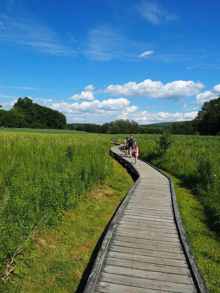 Hiking a short piece of the Appalachian trail