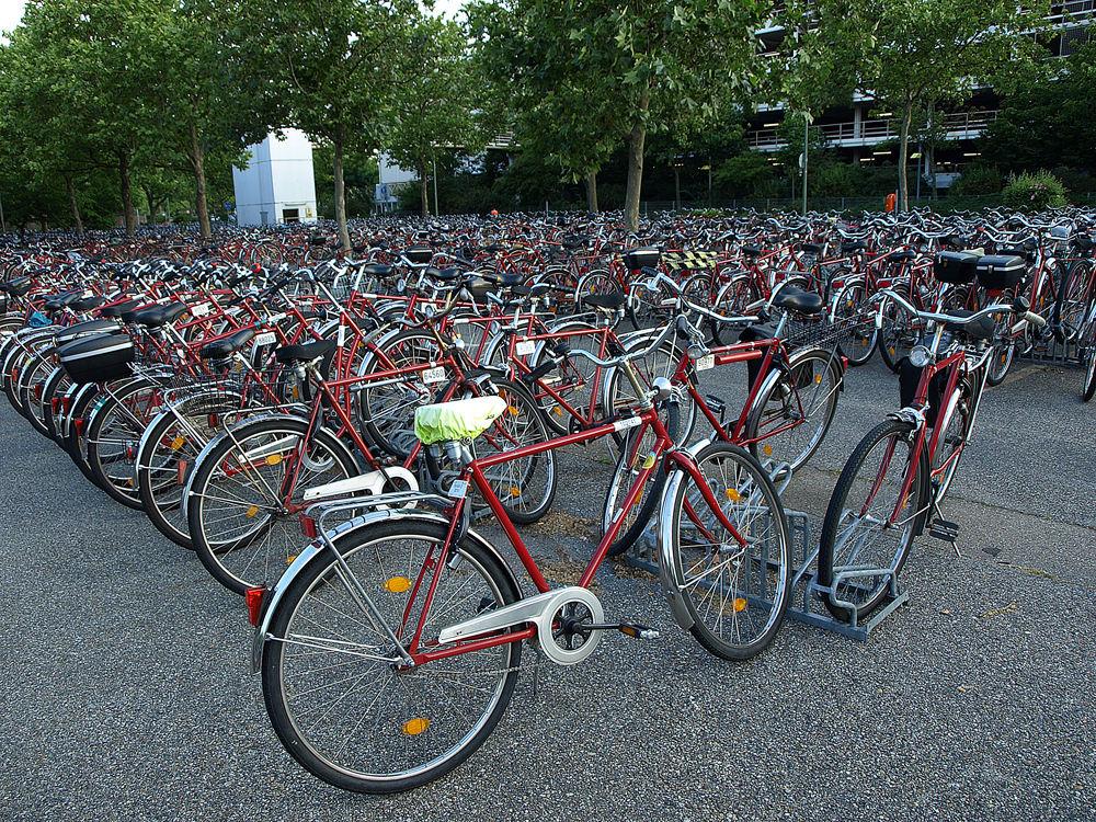 Hilfe! Hat jemand mein Fahrrad gesehen?