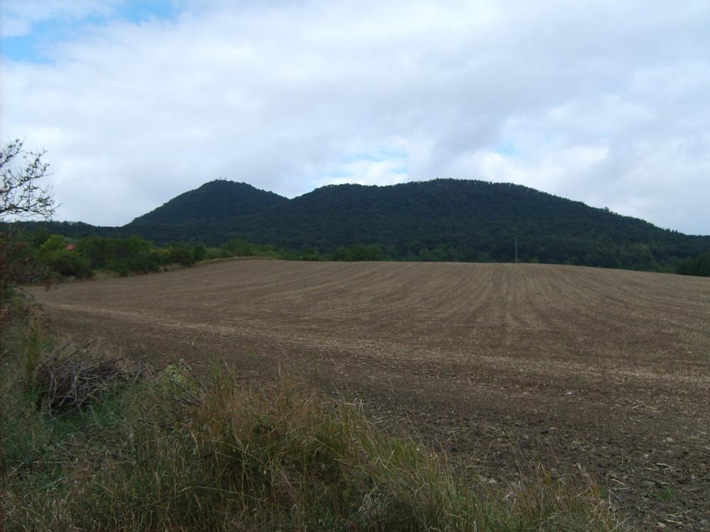 Hill Lovos