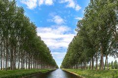Himmel, Allee, Kanal