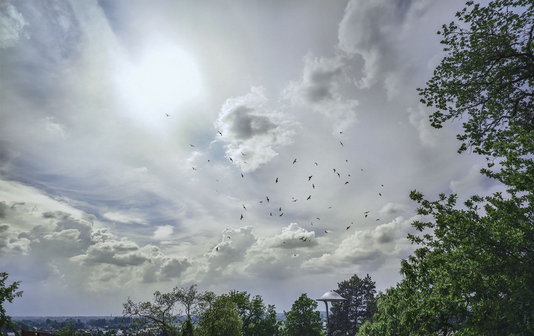 himmel mit vögel, oben links meiner ...