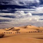 Himmel, Sand und Kamele