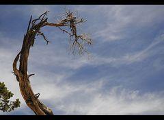 Himmel über dem Grand Canyon USA 2