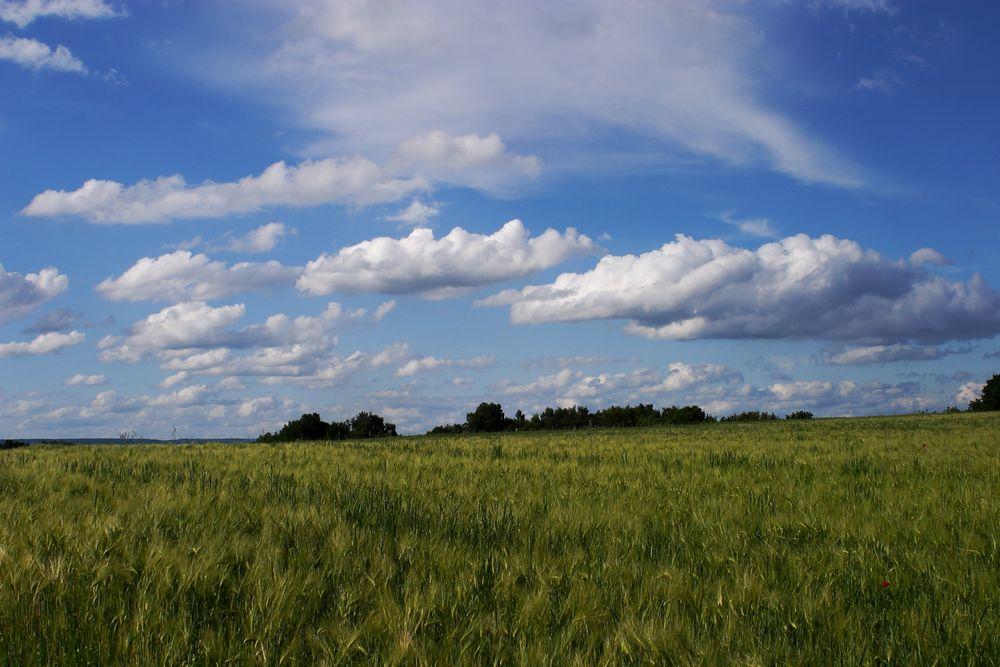 Himmel Und Erde Itzehoe
