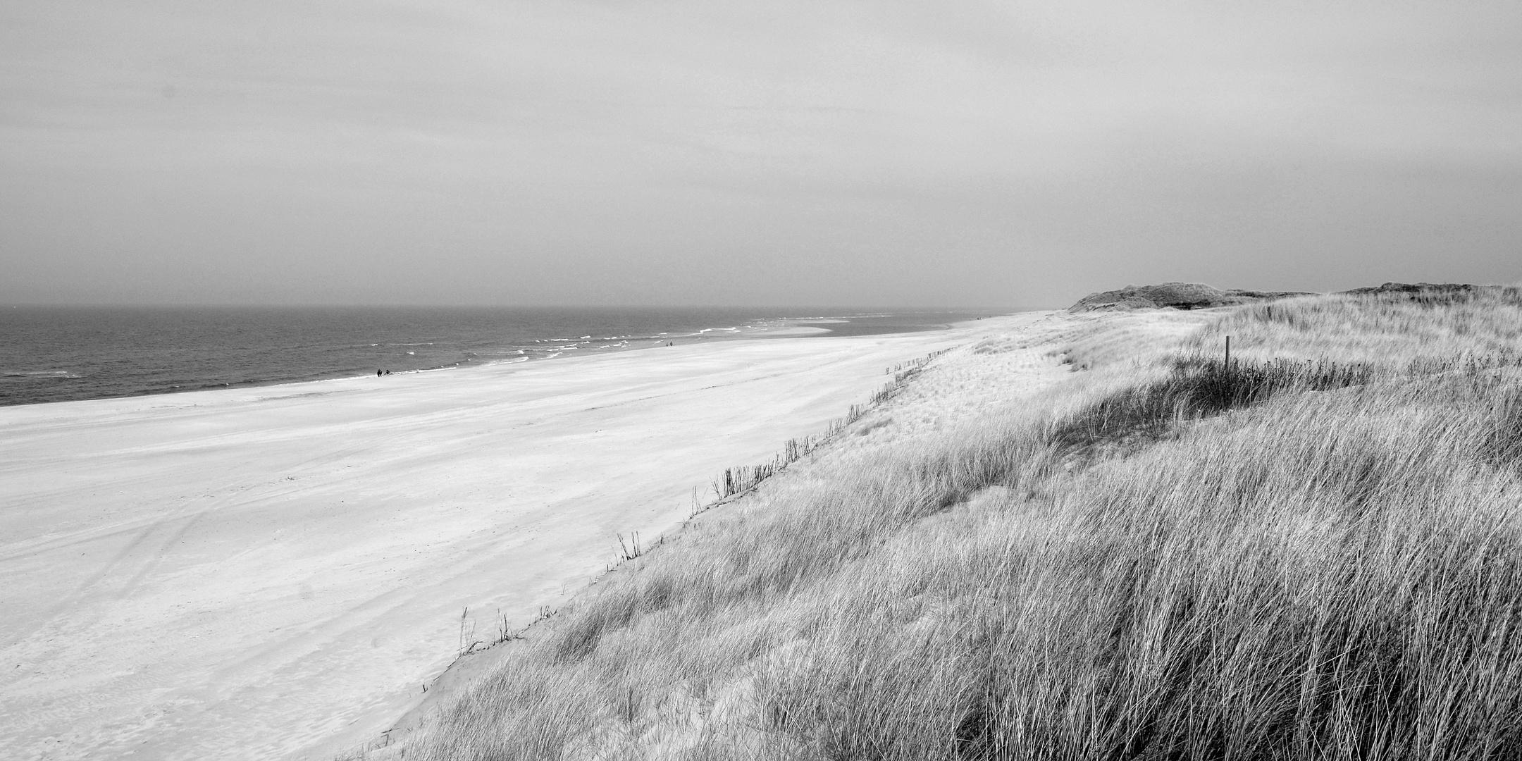 Himmel,Meer,Strand und Dünen # 3512