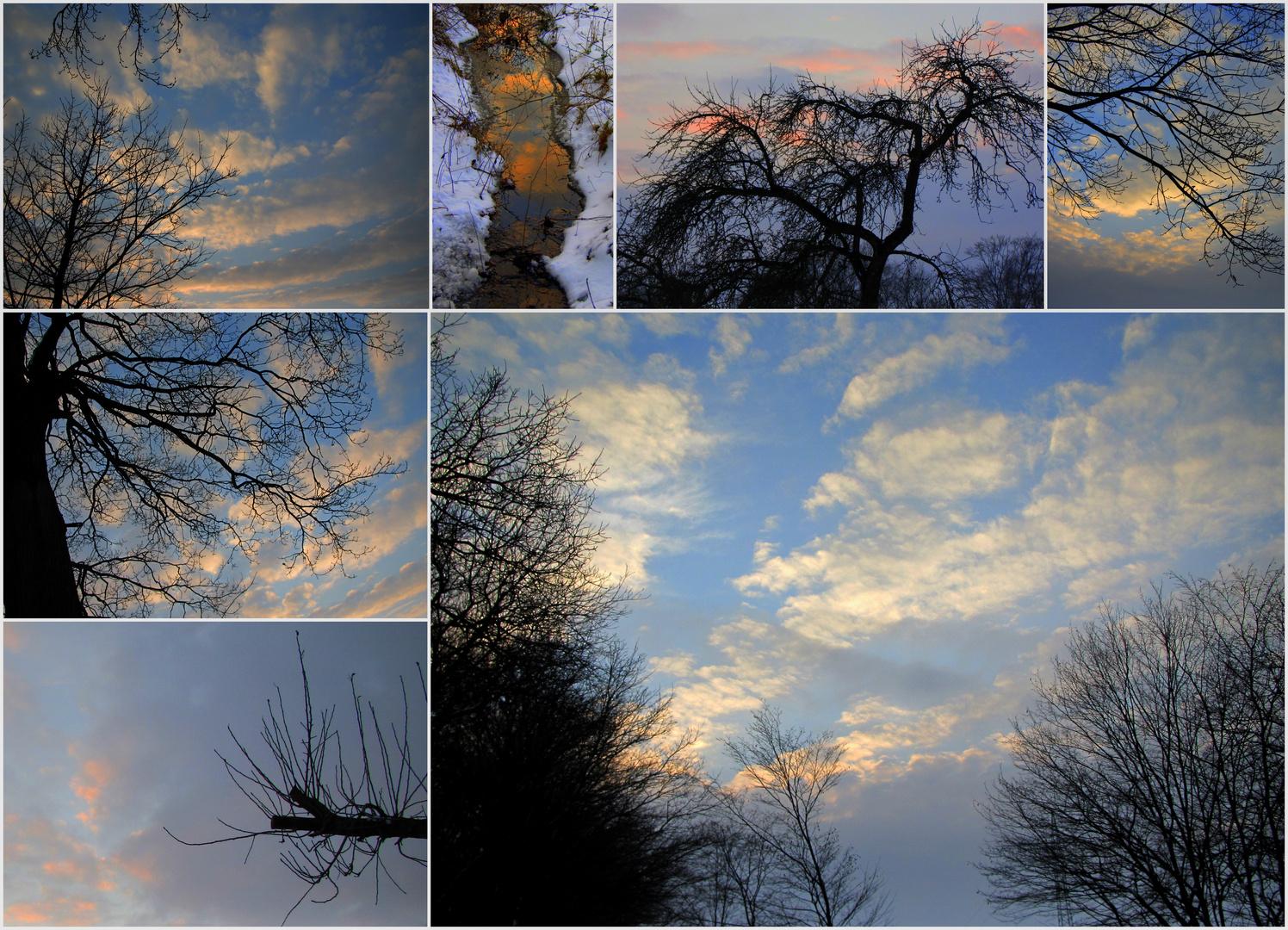 Himmelsgeäst...und ein kleiner Bach in den der Himmel gefallen ist.