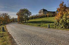 Hinauf zum Cobenzl (Reisenberg)