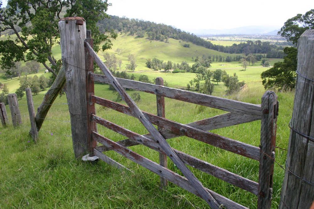 hinter dem Zaun ist es immer grüner