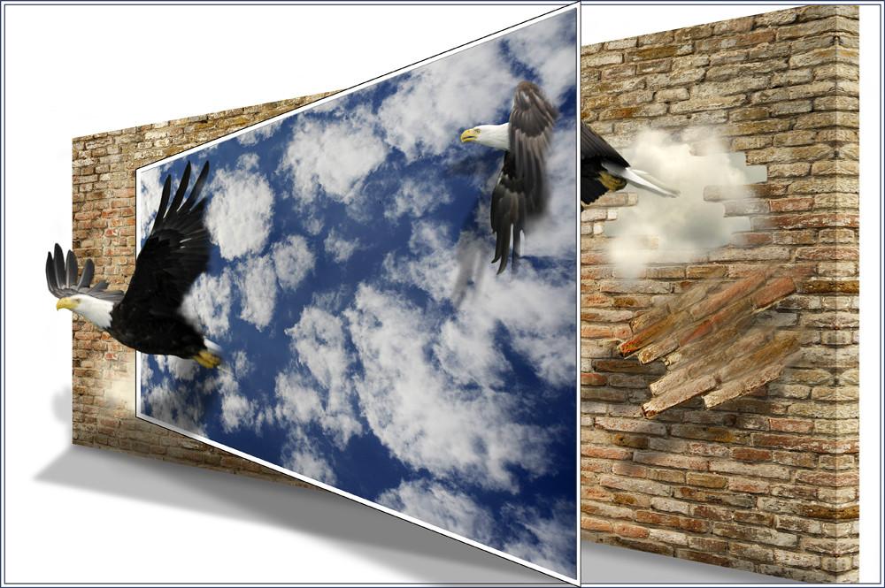 """""""Hinter den Wolken, muß die Freiheit......."""""""