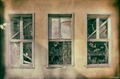 - hinter diesen Fenstern ... -