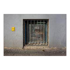 hinter Gittern ...