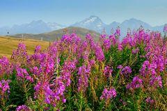 Hintergrund Alpen 3800m
