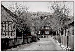 Hinterhof auf dem Land 29