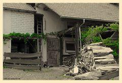 Hinterhof auf dem Land 31