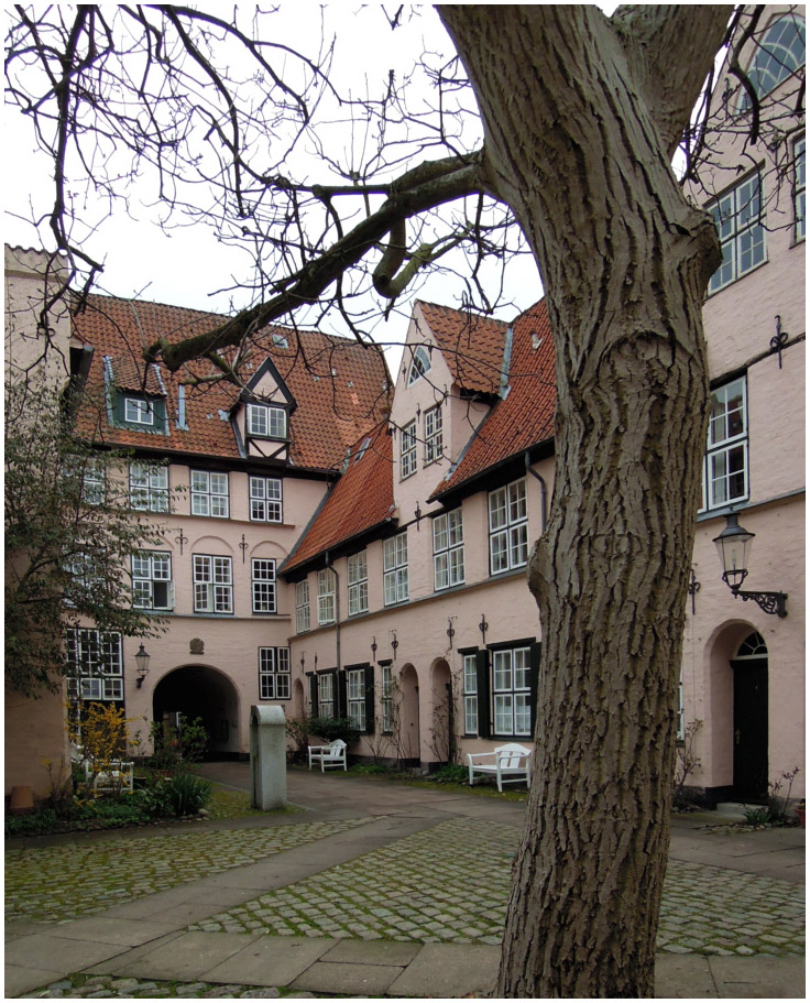 Hinterhof mit Baum