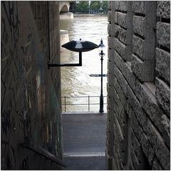 ... hinunter zum Rhein ...