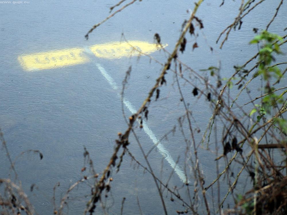 Hinweis der Unteren Fischereibehörde für ihre Schutzbefohlenen